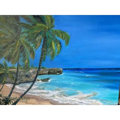 Каптина Маслом « Райский Берег»